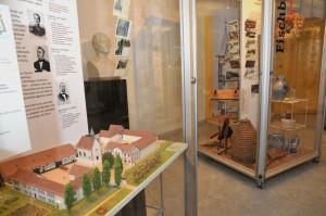 Museum Vitrine