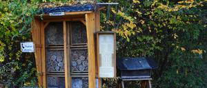 Bild 6: Das Insektenhotel