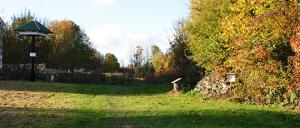 Bild 7: Eidechsenhügel und Schwalbenbaum