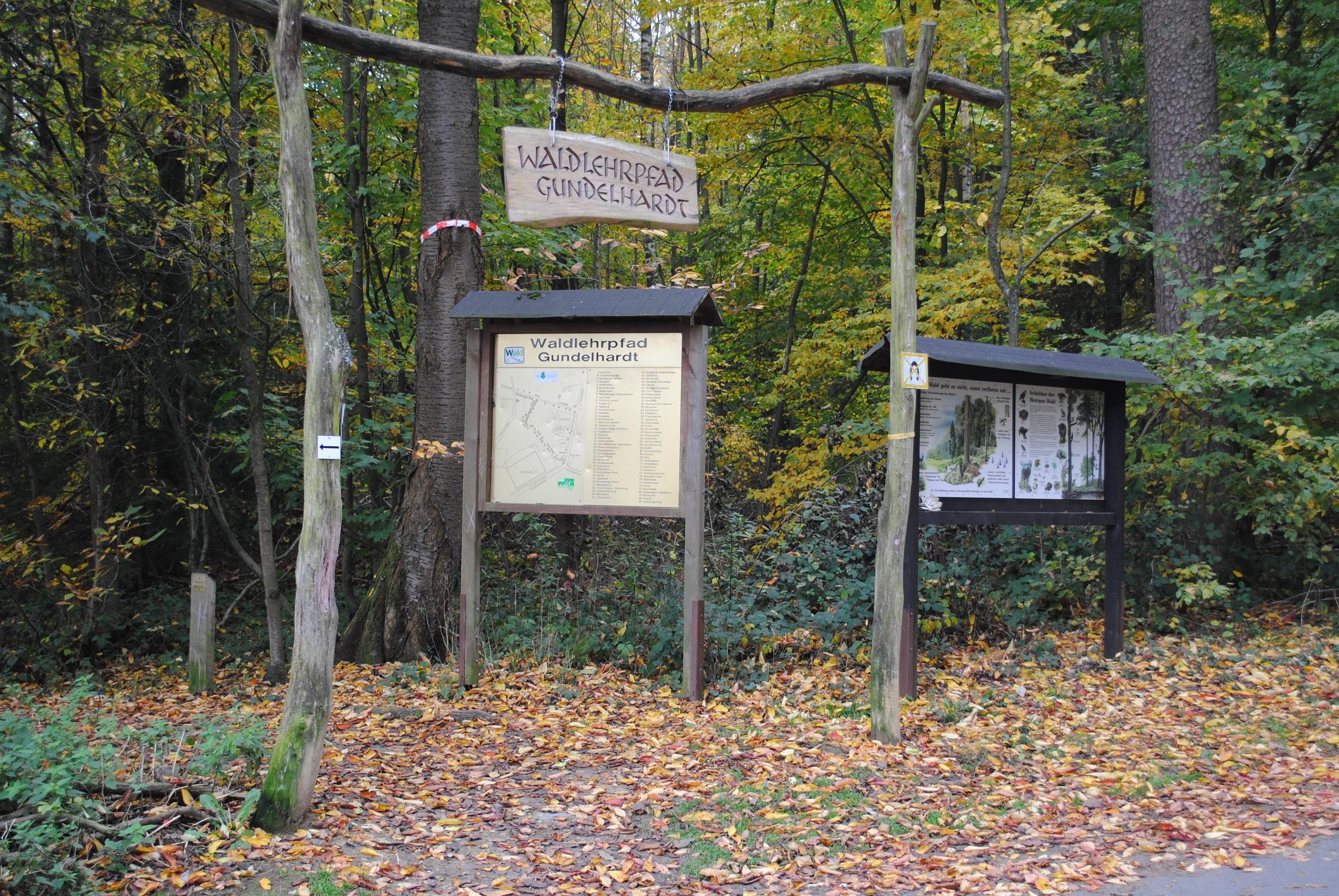 waldlehrpfad-gundelhardt